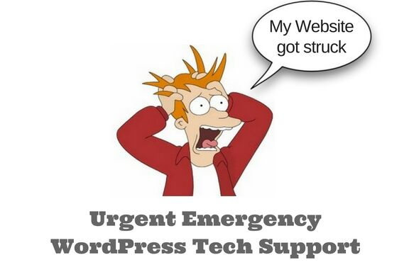 Urgent and Emergency WordPress Tech Support